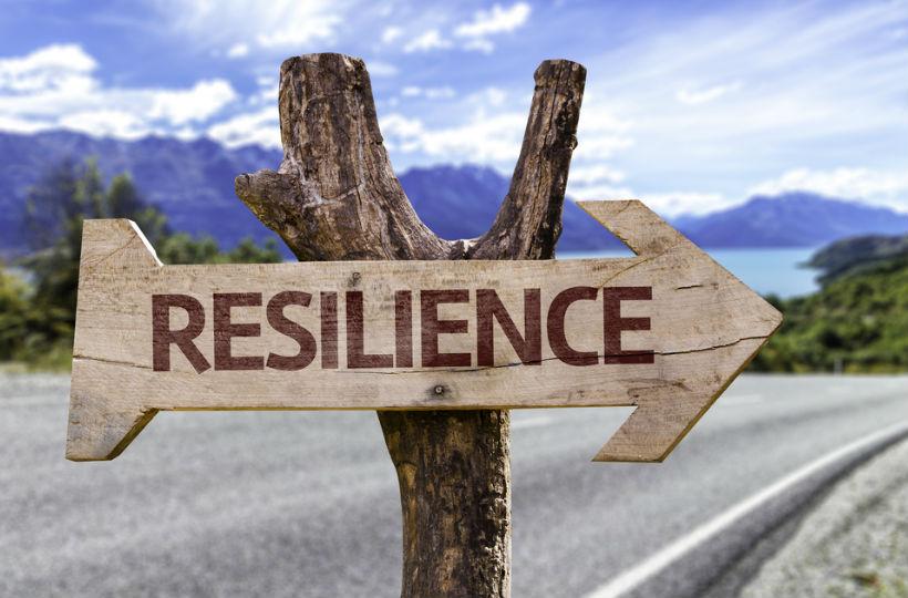 resilienz was steckt hinter dem soft skill und wie wichtig ist er f r f hrungskr fte. Black Bedroom Furniture Sets. Home Design Ideas